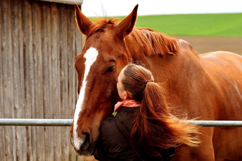 cheval-femme32