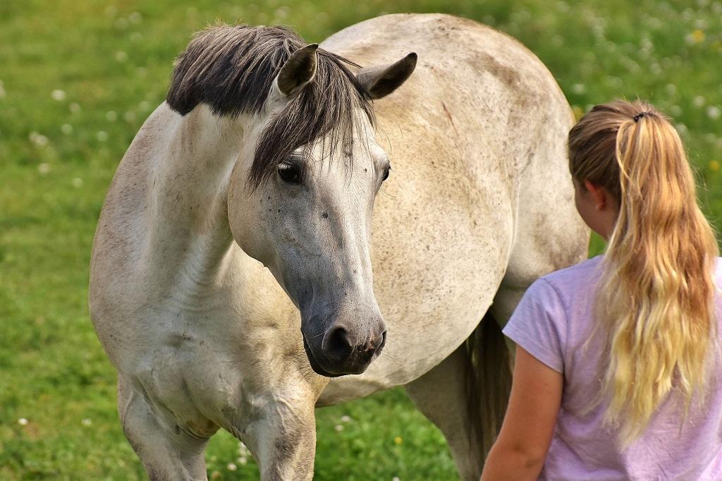 cheval-femme52